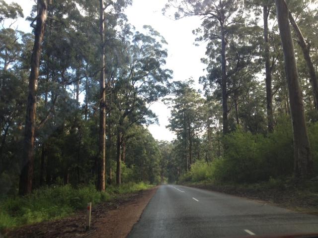 Pemberton drive