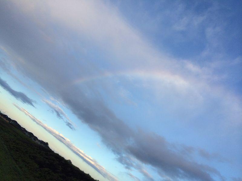 Walk dec 31 upside down rainbow