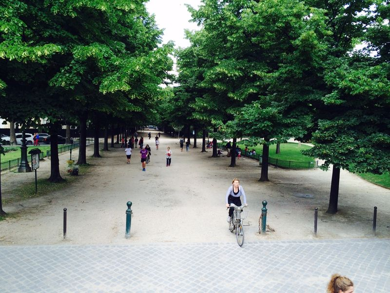 Paris bus gardens