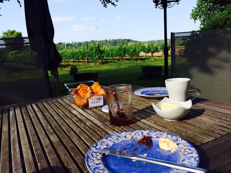 Breakfast in the vineyards